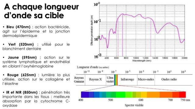 A chaque longueur d'onde sa cible - Copyright Médical Light System ©